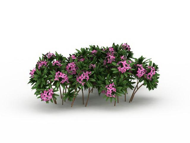 Pink flowers plants 3d rendering