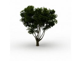Branching tree 3d model preview