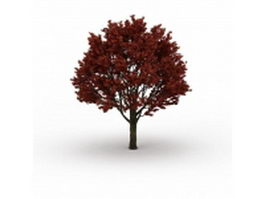 Autumn red maple tree 3d model preview