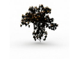 Shrubs with yellow flowers 3d model preview