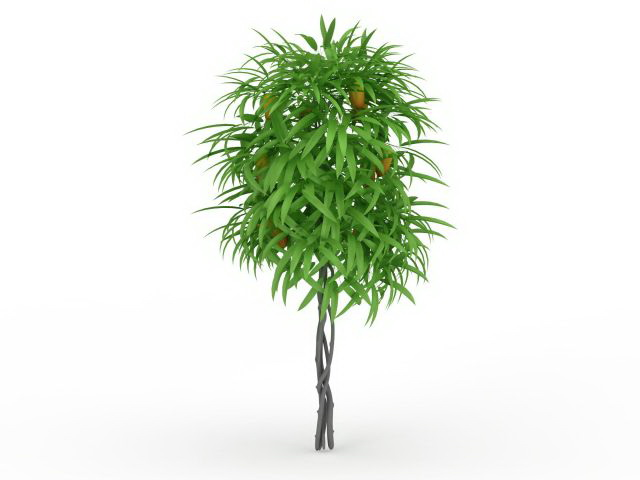Mango tree 3d rendering