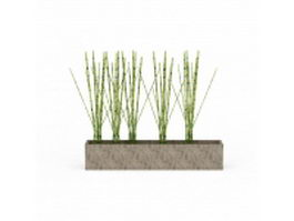 Garden potted bamboo 3d model preview