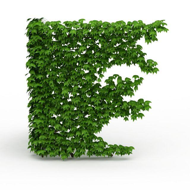 Corner green wall 3d rendering