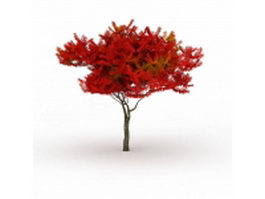 Autumn flame maple tree 3d model preview