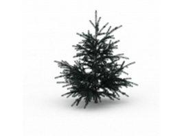 Chir pine tree tree 3d model preview