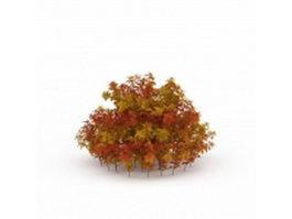 Red shrubs for landscaping 3d model preview