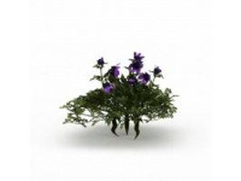Dwarf bushes with purple flower 3d model preview