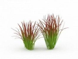 Imperata grass 3d preview