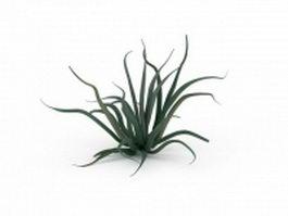Aloe vera plant 3d model preview