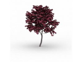 Japanese red maple tree 3d model preview
