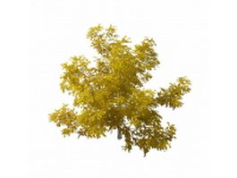 Beautiful yellow tree 3d model preview