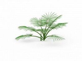 Fiji fan palm 3d model preview