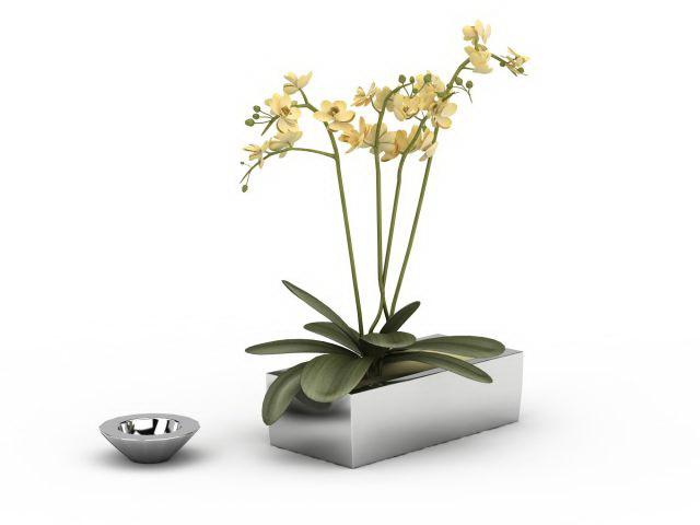 Small rectangle flower pot 3d rendering