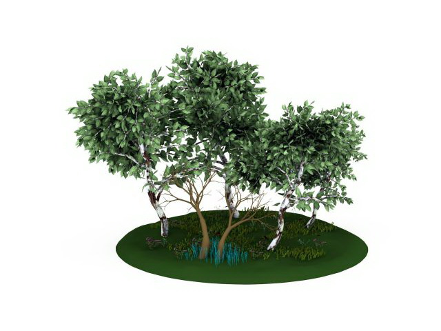 Tree and grass 3d rendering