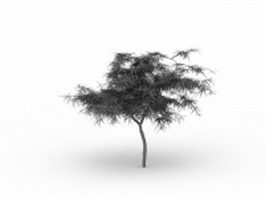 Young tree 3d model preview
