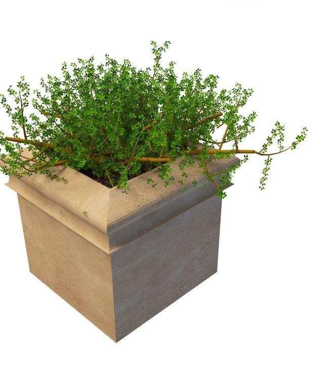 Large outdoor garden planter 3d rendering