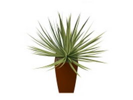 Potted grass plants 3d preview