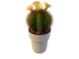 Blooming cactus houseplants 3d preview