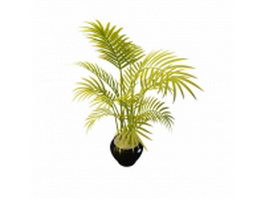 Potted palm bamboo 3d preview