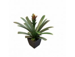 Agave potted plant 3d model preview