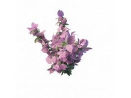 Pink leaf bush for landscaping 3d model preview