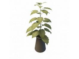 Indoor decorative plant pots 3d model preview