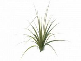Tall grass plants 3d preview