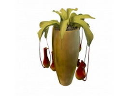 Indoor ornamental plant 3d preview