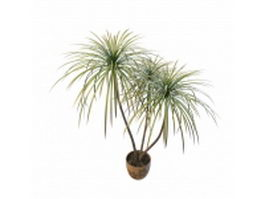 Potted bamboo palm 3d preview