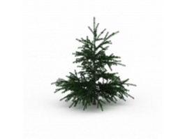 Fir Christmas tree 3d preview