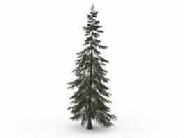 Turkish fir tree 3d model preview