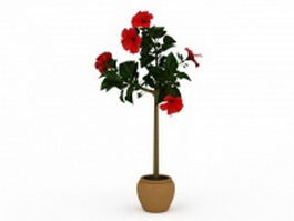 Hibiscus flower silk tree 3d preview