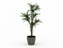 Potted ornamental trees 3d preview