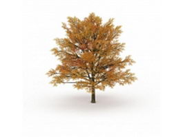 Fall color tree 3d model preview
