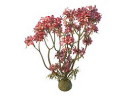Pink flowering tree with flowers 3d model preview