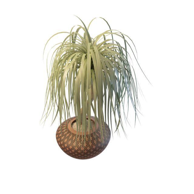 Bonsai tree 3d rendering