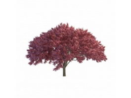 Purple blooming tree 3d model preview