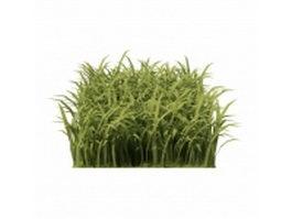 Piece of grass 3d preview