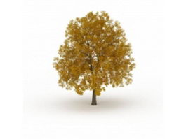 Fall apple tree 3d model preview
