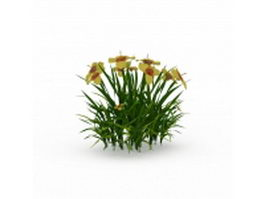 Shrub yellow flowers 3d preview