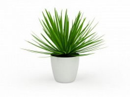 Aloe vera plant pot 3d preview