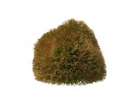 Topiary grass 3d preview