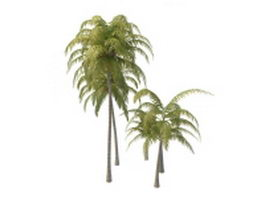 Tropical coconut trees 3d model preview