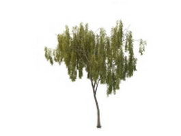 Dwarf willow tree 3d model preview