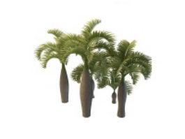 Palmyra palm trees 3d model preview