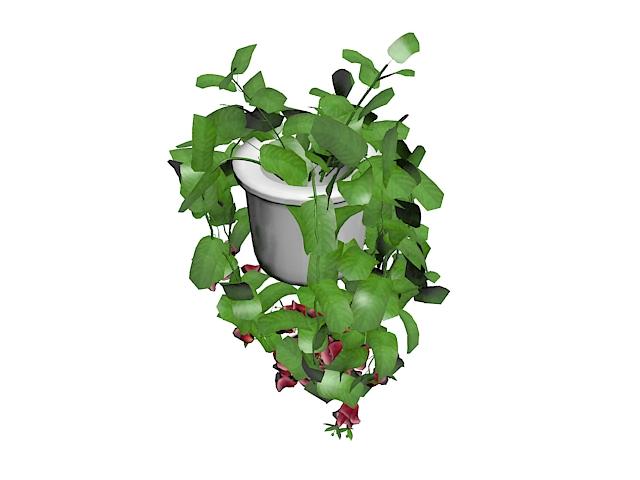 Indoor potted vine plant 3d rendering