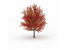 Autumn maple tree 3d model preview