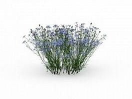 Flowering grass plants 3d preview