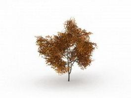 Yellow tilia tree 3d preview
