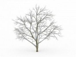 Winter tree 3d model preview
